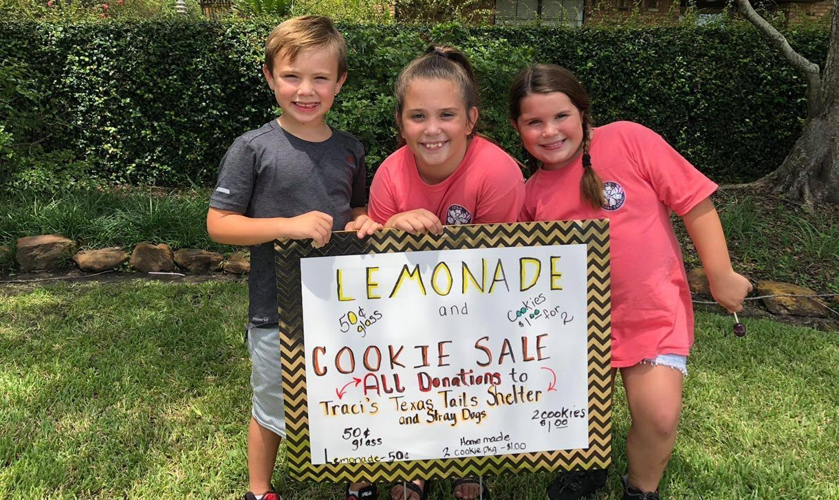Second Annual Lemonade and Cookie Fundraiser for Traci's Texas Tails