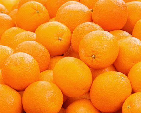 The Orange Grove: Get Your Oranges Here