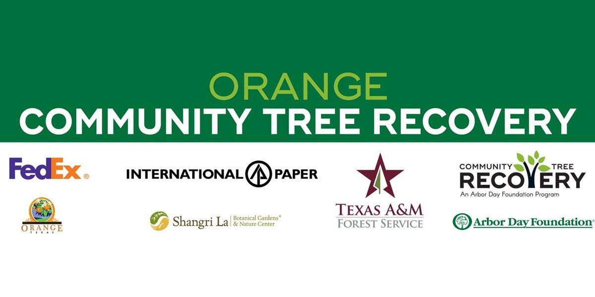 City of Orange to Give Out 1000 Trees