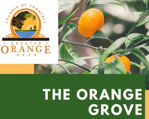 Orange Chamber of Commerce Posts Interactive Orange Grove Map