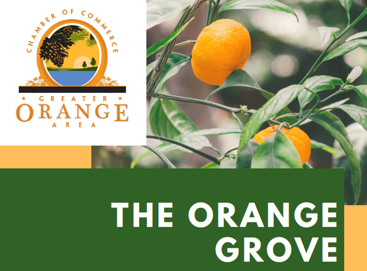 Orange Chamber of Commerce Posts Interactive Orange Grove Map