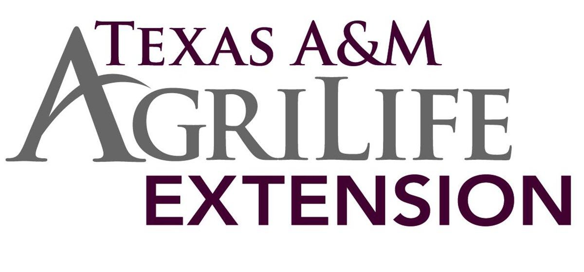 Texas A&M AgriLife Extension of Orange County Offering New Classes in 2020