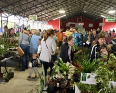 7th Annual Bloomin' Crazy Plant Fair Scheduled