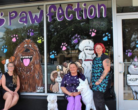 Pet Grooming Shop Opens on Green Ave.