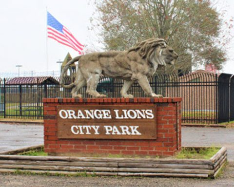 Proposed Lions Den Playground Design Layouts Scheduled for Review at May 26 Council Meeting