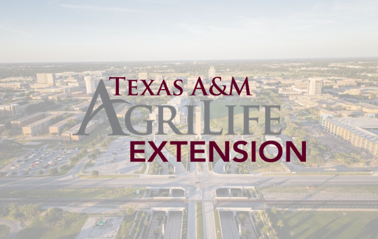 Texas A&M AgriLife Extension Offering Virtual Canning Classes