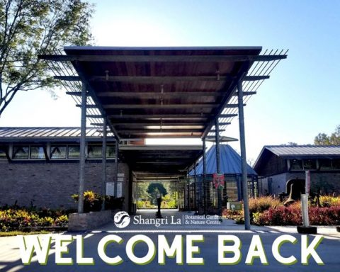 Shangri La Botanical Gardens Has Reopened to Public
