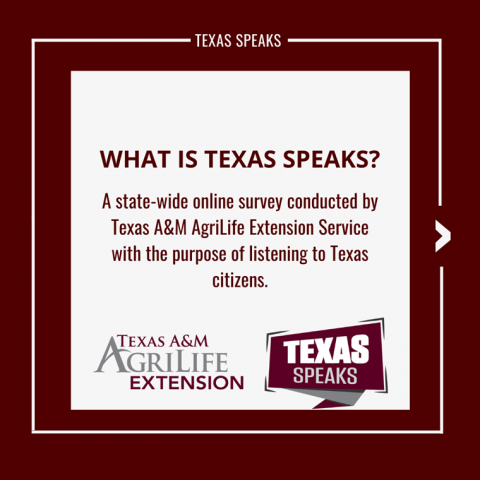 Texas A&M AgriLife Extension Service Surveys Texans on Strengths, Needs of Communities