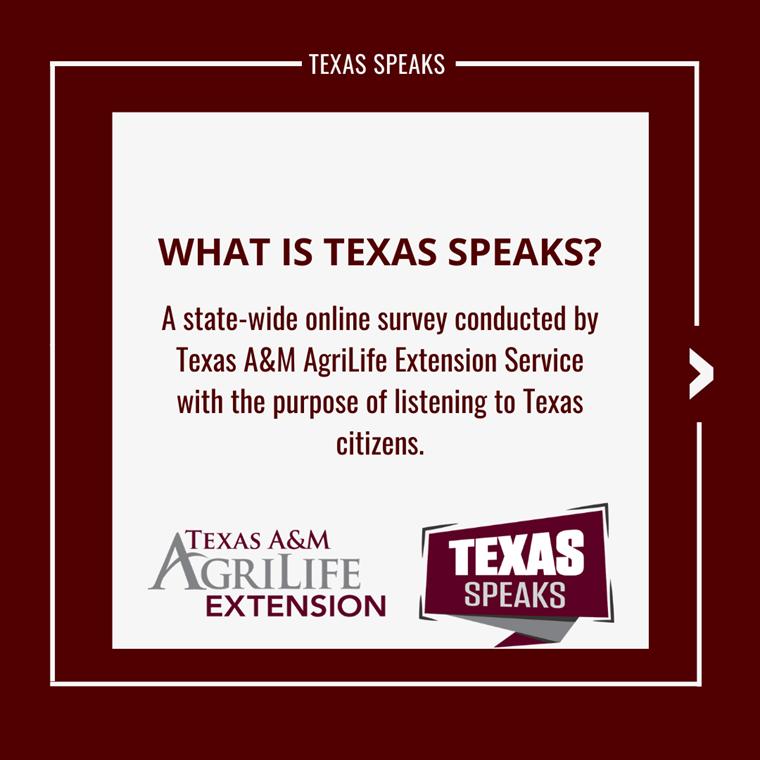 Texas A&M AgriLife Extension Service Surveys Texans on Strengths, Needs of Communities